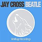Jay Cross Beatle