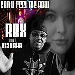 RBX Can You Feel Me Now (Feat. Wanaya) - Single