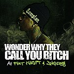 AV Wonder Why They Call You B*tch (Feat. Kurupt & Snoop Dogg) - Single