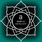 Shiva Noctilucent