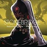 Stonebridge Put 'em High