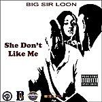 Big Sir Loon She Don't Like Me - Single