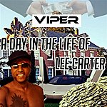 Viper A Day In The Life Of Lee Carter