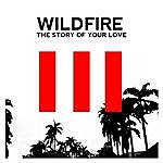 Wildfire The Story Of Your Love