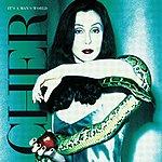 Cher It's A Man's World