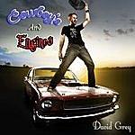 David Gray Cowboy's And Engines