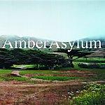 Amber Asylum The Supernatural Parlour Collection