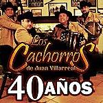 Los Cachorros De Juan Villarreal 40 Años