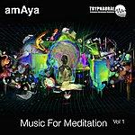 Amaya Music For Meditation Vol 1 Trypnaural