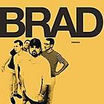 Brad Interiors