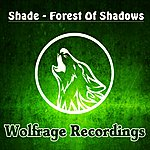 Shade Forest Of Shadows