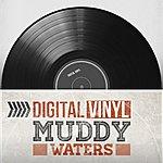 Muddy Waters Digital Vinyl