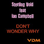 Sterling Void Don't Wonder Why (Feat. Ian Campell)