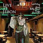 Scott Wilson Live At Jebon Scott Wilson & Efendi Belly Dance Music