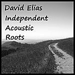 David Elias Independent Acoustic Roots