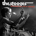 The Stooges Have Some Fun: Live At Ungano's