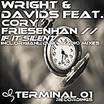 Wright If It Silent (Feat. Cory Friesenhan)
