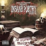 Insane Poetry 20 Years Of Madness