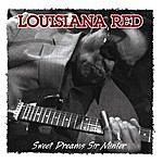 Louisiana Red Sweet Dreams Sir Minter