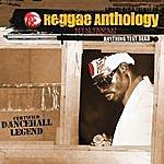 Ninjaman Reggae Anthology: Anything Test Dead