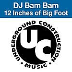 DJ Bam Bam 12 Inches Of Big Foot