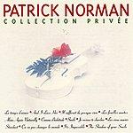 Patrick Norman Collection Privée