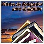 Andreas Música De Relajación Para El Estudio