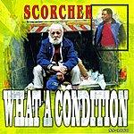 Scorcher What A Condition