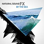 Natural Sounds Natural Sound Fx: By The Sea