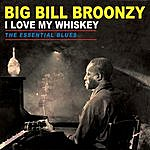 Big Bill Broonzy I Love My Whiskey - The Essential Blues