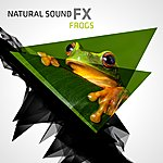 Natural Sounds Natural Sound Fx: Frogs