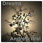 Andrew Brel Dreams