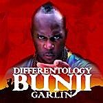 Bunji Garlin Differentology - Single