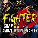 Cham Fighter