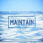 Joe Hesh Maintain