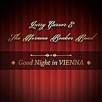 Larry Garner Good Night In Vienna