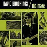 David Brookings The Maze