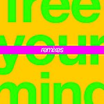 Cut Copy Free Your Mind (Fort Romeau Remix)