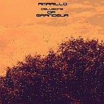Amarillo Delusions Of Grandeur