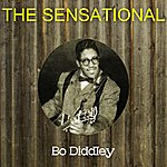 Bo Diddley The Sensational Bo Diddley