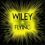Wiley Flying (Remix)