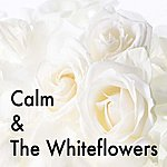Calm Calm & The Whiteflowers