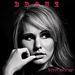 Bronz Never Give Up - Single