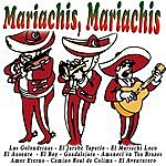 Orlando Mariachis, Mariachis