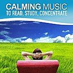 Here Calming Music To Read, Study, Increase Concentration (Relaxing Soundscapes Selected For Self-Healing, Music Therapy)