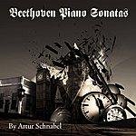 Artur Schnabel Beethoven: Piano Sonatas