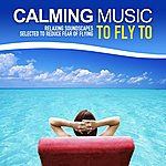 Here Calming Music To Fly To (Relaxing Soundscapes Selected To Reduce Fear Of Flying)