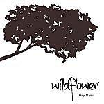 Wildflower Hey Mama