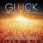 Juraj Alexander Gluck: The Eight Trio Sonatas