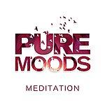 Bruno Philip Pure Moods: Meditation